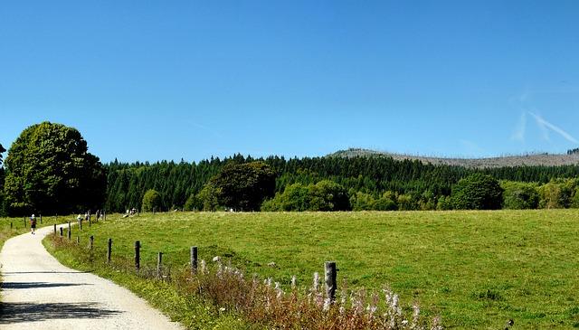 Route onderweg in Šumava
